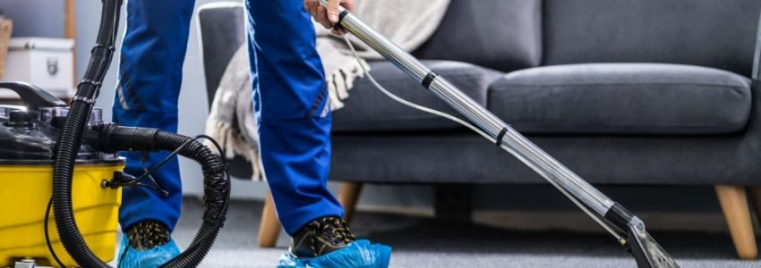 Why should opt for carpet cleaning?