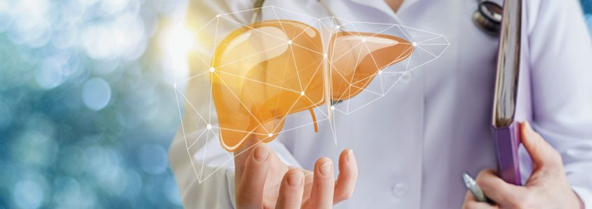 Precautions for the safety of a liver